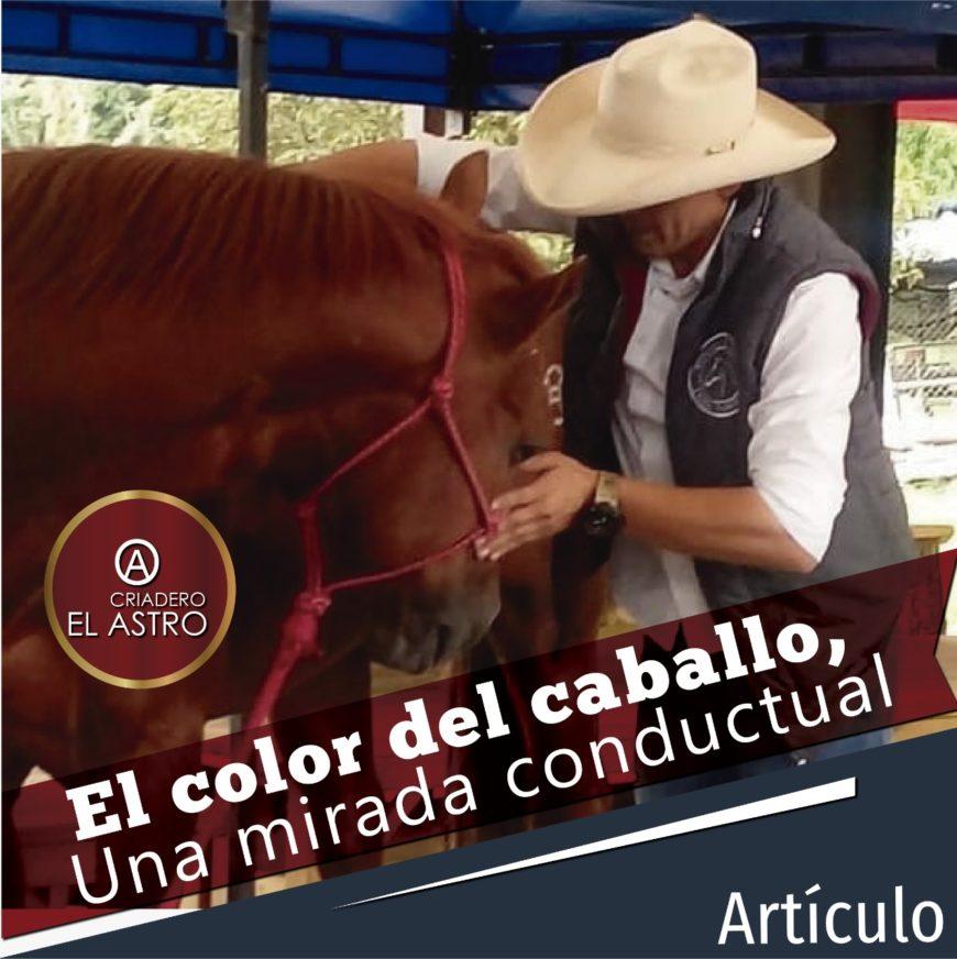 El color del caballo, Una mirada conductual