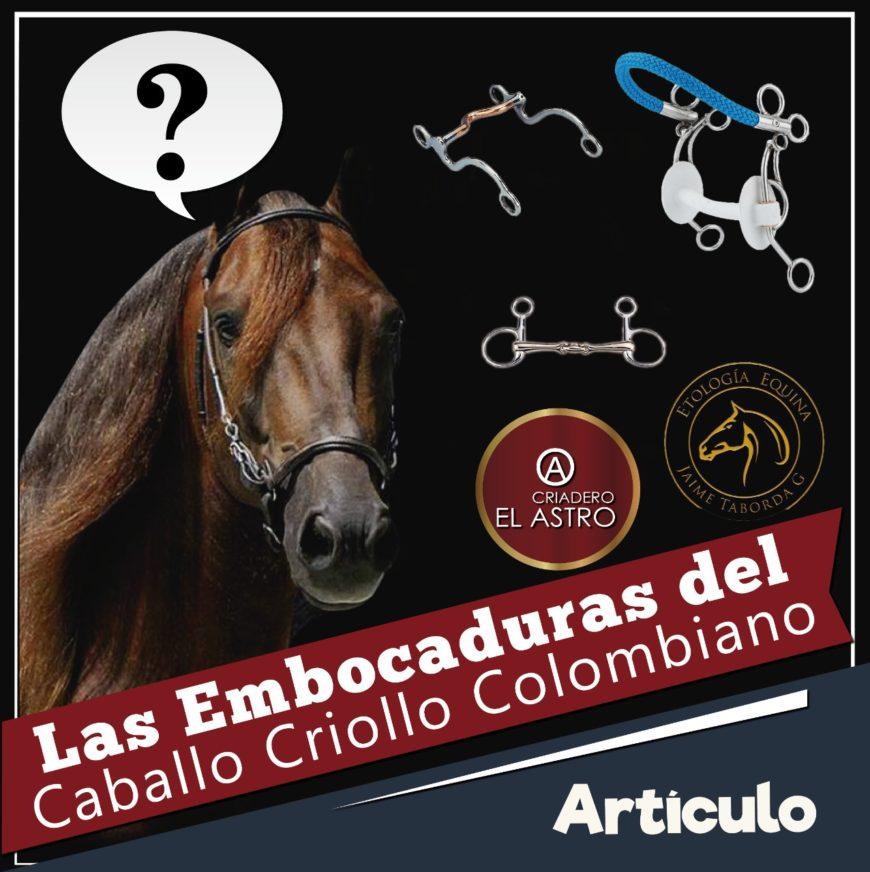 Las Embocaduras del Caballo Criollo Colombiano
